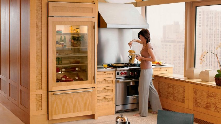 Refrigerator with a transparent door: a stylish unit in the modern kitchen
