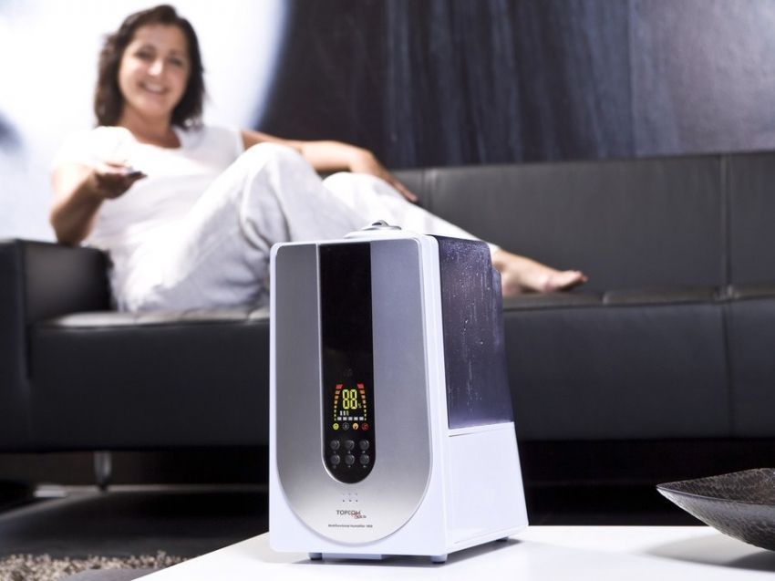 Air ionizer: everything about work and features of use of the device