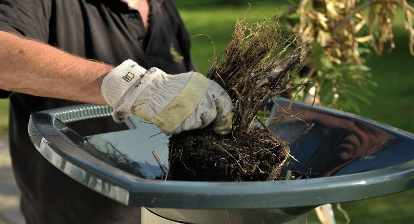 Electric garden shredder branches and grass: an overview of popular models