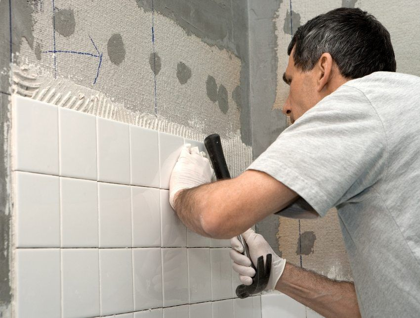 Which glue is better for tile? Varieties of adhesives