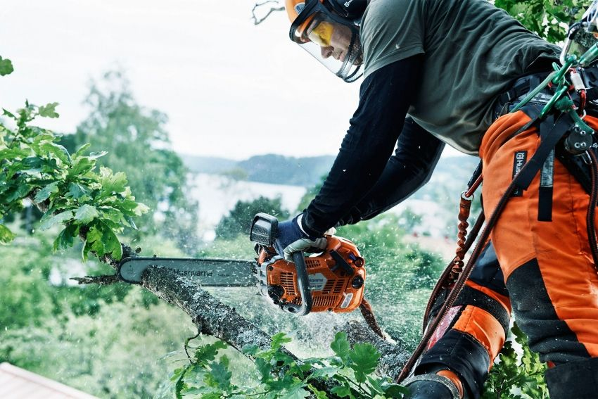 What brand of chainsaw to choose: a review of the best modern models
