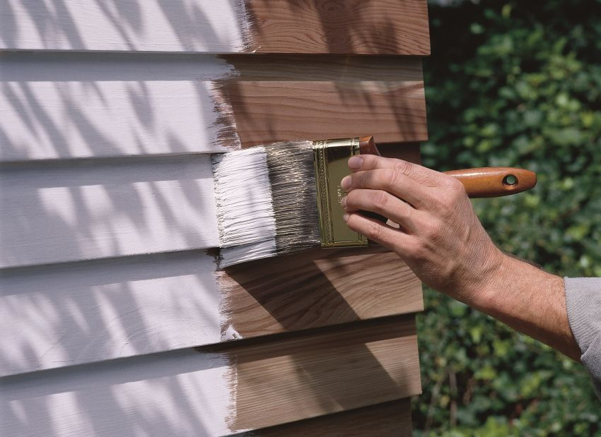 Wood exterior paint: a quick overview of dyes