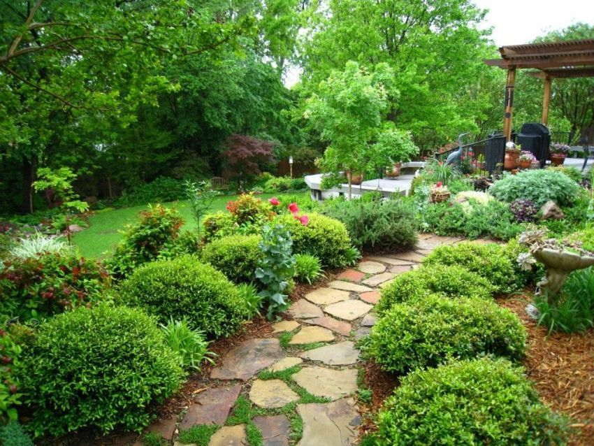 Landscape design of a small area: ways to expand space