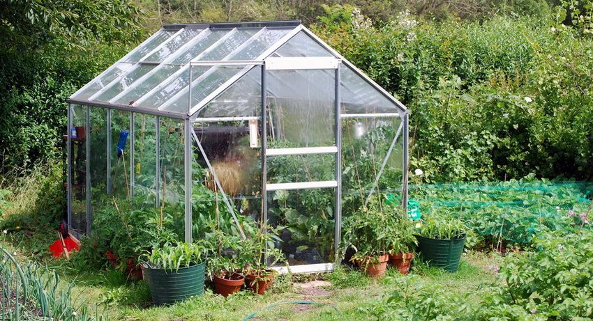 Greenhouse for cucumbers with their own hands: photos of the best solutions for the dacha