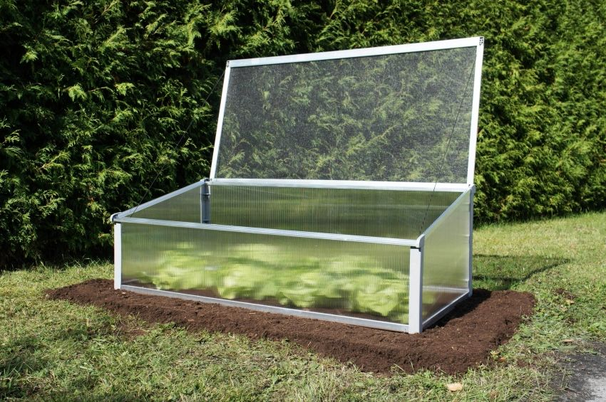 Polycarbonate greenhouses with opening top: types and features of construction