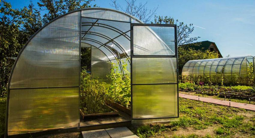 Do-it-yourself greenhouses: the best projects and materials for construction