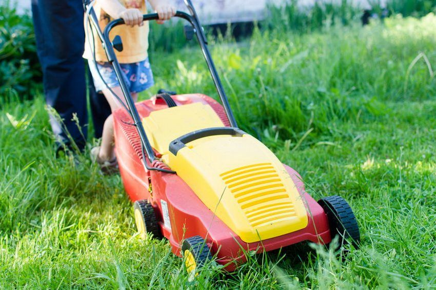 Rating of the best models of electric lawn mowers